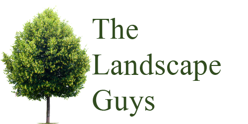 The Landscape guys Logo